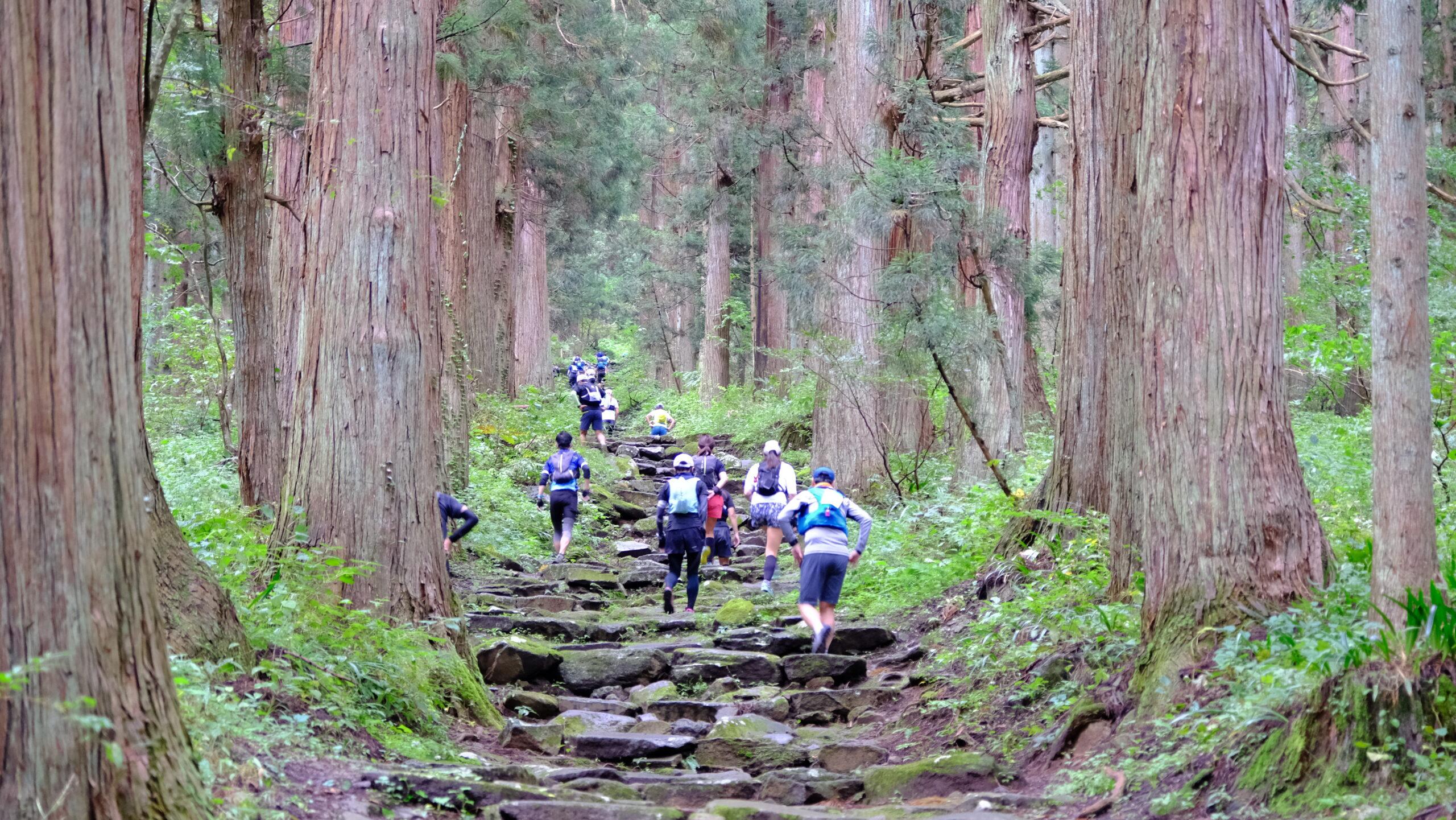 【トレイルラン・長野】Nozawa Spa Trail Race 2021 2021.10.23